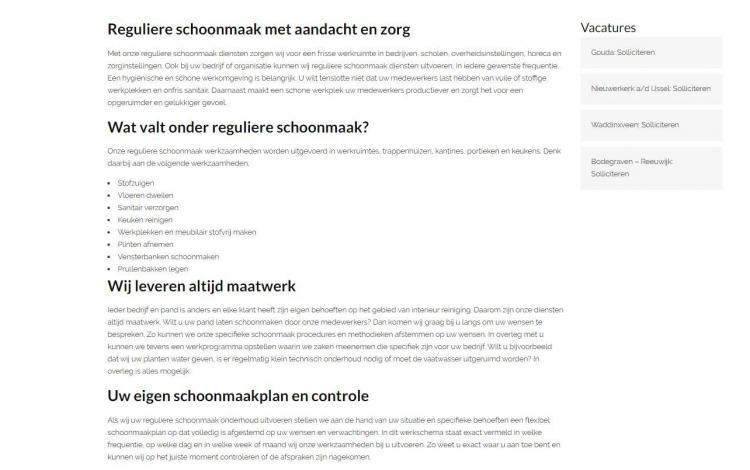 Bens thuiszorg schoonmaak diensten portfolio webburo spring horizontaal2