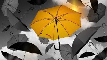 Tips en advies van  Webburo Spring: Heldere USP's